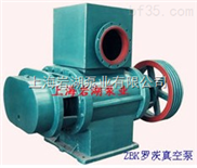 ZBK型羅茨式真空泵