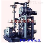 罗茨-水环真空泵机组