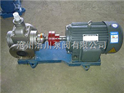 供应海川耐腐蚀YCB系列不锈钢圆弧齿轮泵