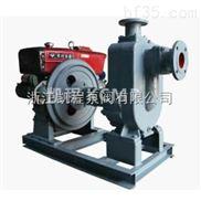 XBC-ZW柴油机自吸排污泵
