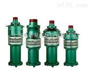 QY10-51-3油浸式潜水泵,大口径大流量QY潜水电泵