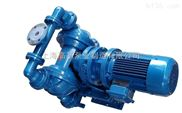 DBY-80耐腐蚀电动隔膜泵 DBY-100不锈钢电动隔膜泵