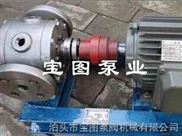 圆弧齿轮泵订做不锈钢材质的厂家--宝图泵业