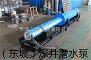 高扬程潜水泵-天津高扬程热水潜水泵